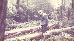 Scierie Gonnachon dans Rhone Alpes - 69